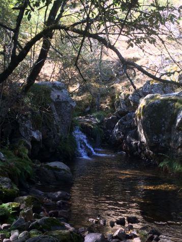 curso del río