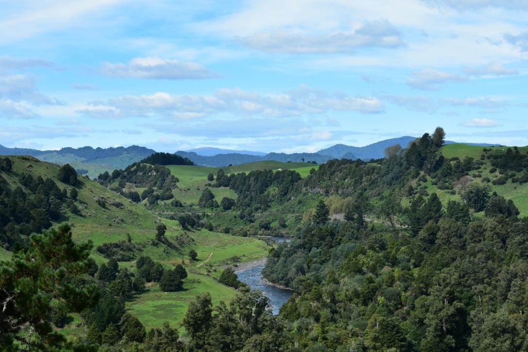 Akelarre_NZ2
